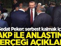 Sedat Peker: serbest kalmak için AKP ile Anlaştımı gerçeği Açıkladı