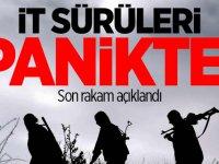 Pençe Harekatı'nda Bugüne Kadar 57 Terörist öldürüldü