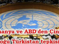 Almanya ve ABD'den Çin'e Doğu Türkistan tepkisi