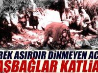 Başbağlar Katliamı: 5 Temmuz 1993, Unutmadık, Unutturma