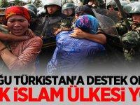"""Türk Ocakları: """"Doğu Türkistan'a destek veren tek İslam ülkesi yok"""""""