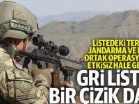 """Jandarma ve MİT'ten operasyon: """"Gri listedeki terörist etkisiz hale getirildi"""""""