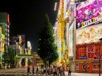 'Japonya'ya Günlük Uçuş Sayısını 4'e Çıkarmayı Hedefliyoruz'