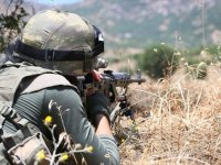 Hakkari ve Muş'ta PKK'ya darbe...