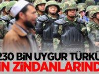 230 bin Uygur Türkü Çin zindanlarında