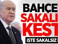 MHP Lideri Devlet Bahçeli sakalını kesti!