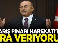 Mevlüt Çavuşoğlu: Barış Pınarı Operasyonuna ara veriyoruz