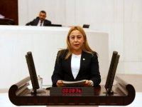 MHP'li Esin Kara: Mali reform istedi