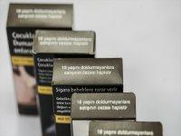 Düz paket uygulaması tütün tüketimini 2008'in başına çekebilir