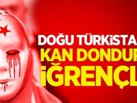 Doğu Türkistan'da kan donduran iğrençlik!