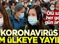Ölü sayısı her geçen gün artıyor! Koronavirüs tüm ülkeye yayıldı