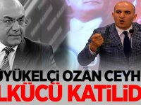 MHP'li Olcay Kılavuz'dan tepki: Ozan Ceyhun ülkücü katilidir