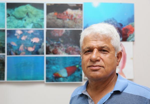 Antalya Körfezinin Yeni Kızıldenizlisi; Kardinal Balığı