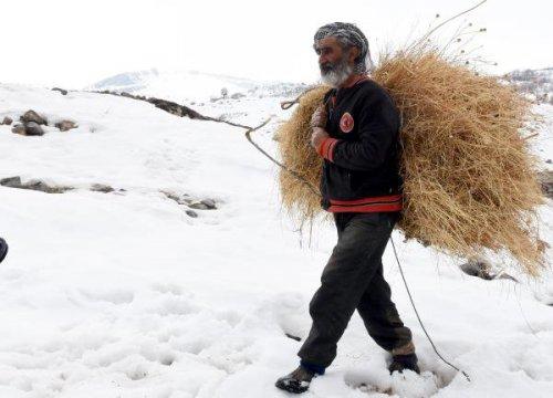 Boşaltılan Köyüne Döndü; Tek Başına Ve Huzurlu