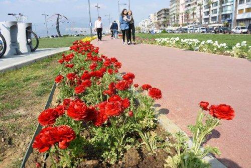 Kordon Rengarenk Çiçeklere Bezendi